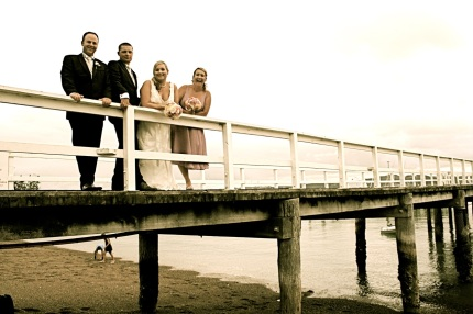 Jules Jetty wedding